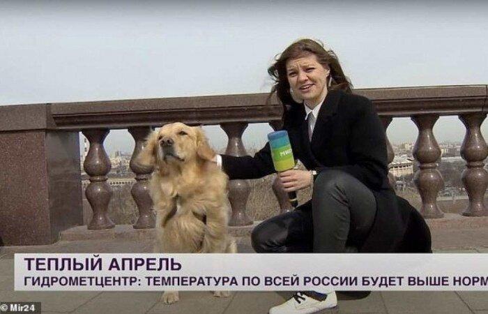 (Foto: MIrTV/Reprodução)
