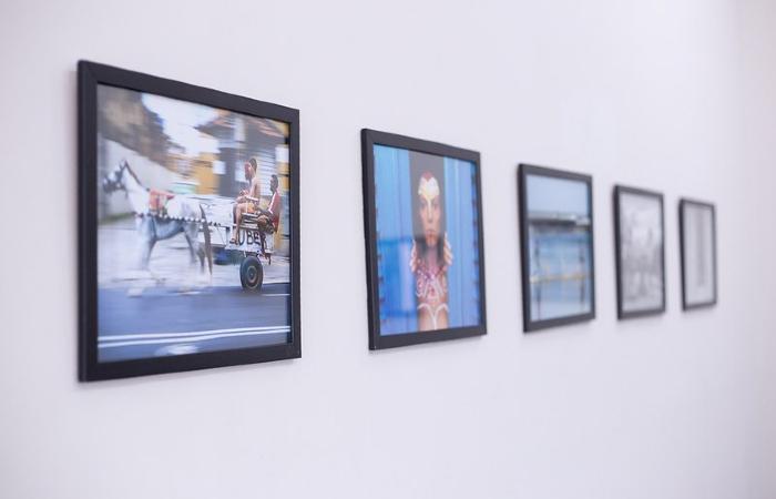 Exposição foi montada no gabinete da vice-governadora (Foto: Divulgação)