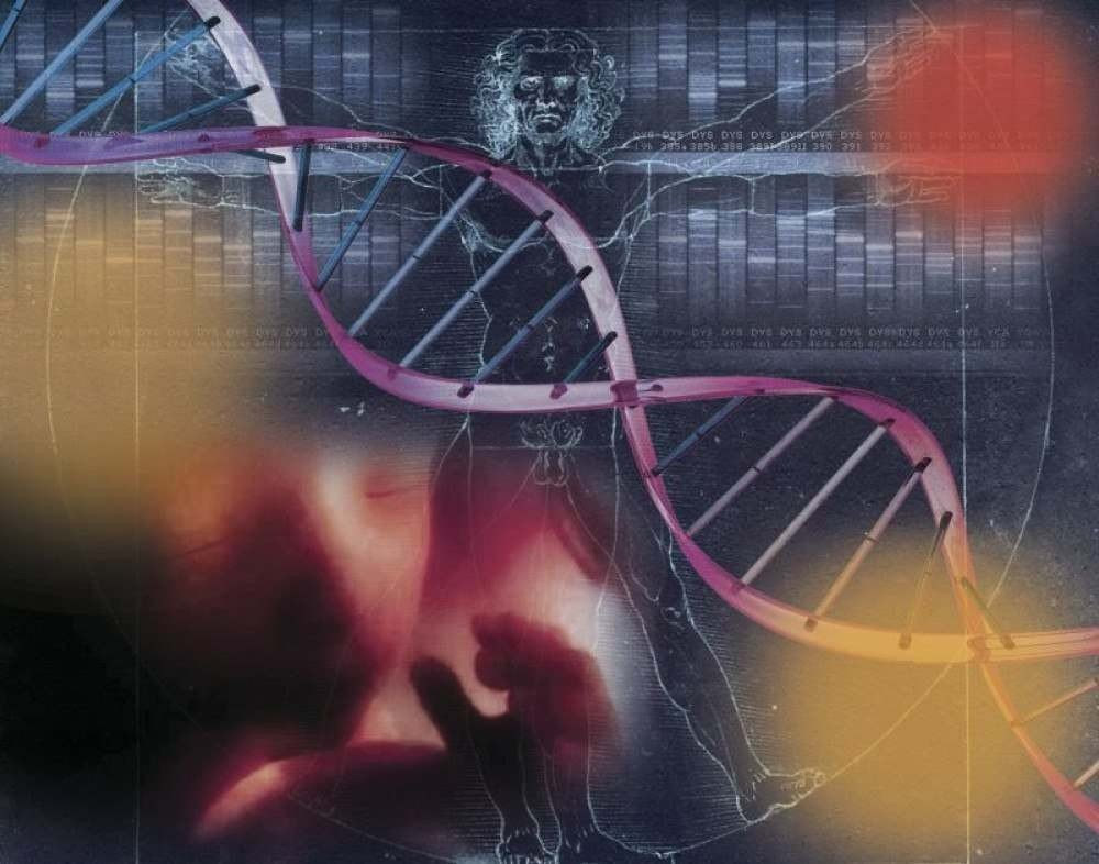 (Modelo com DNA de dois parentes próximos é criado por pesquisadores da Espanha e da China e surpreende a comunidade científica. Foto: Editoria de Arte/CB/D.A Press)