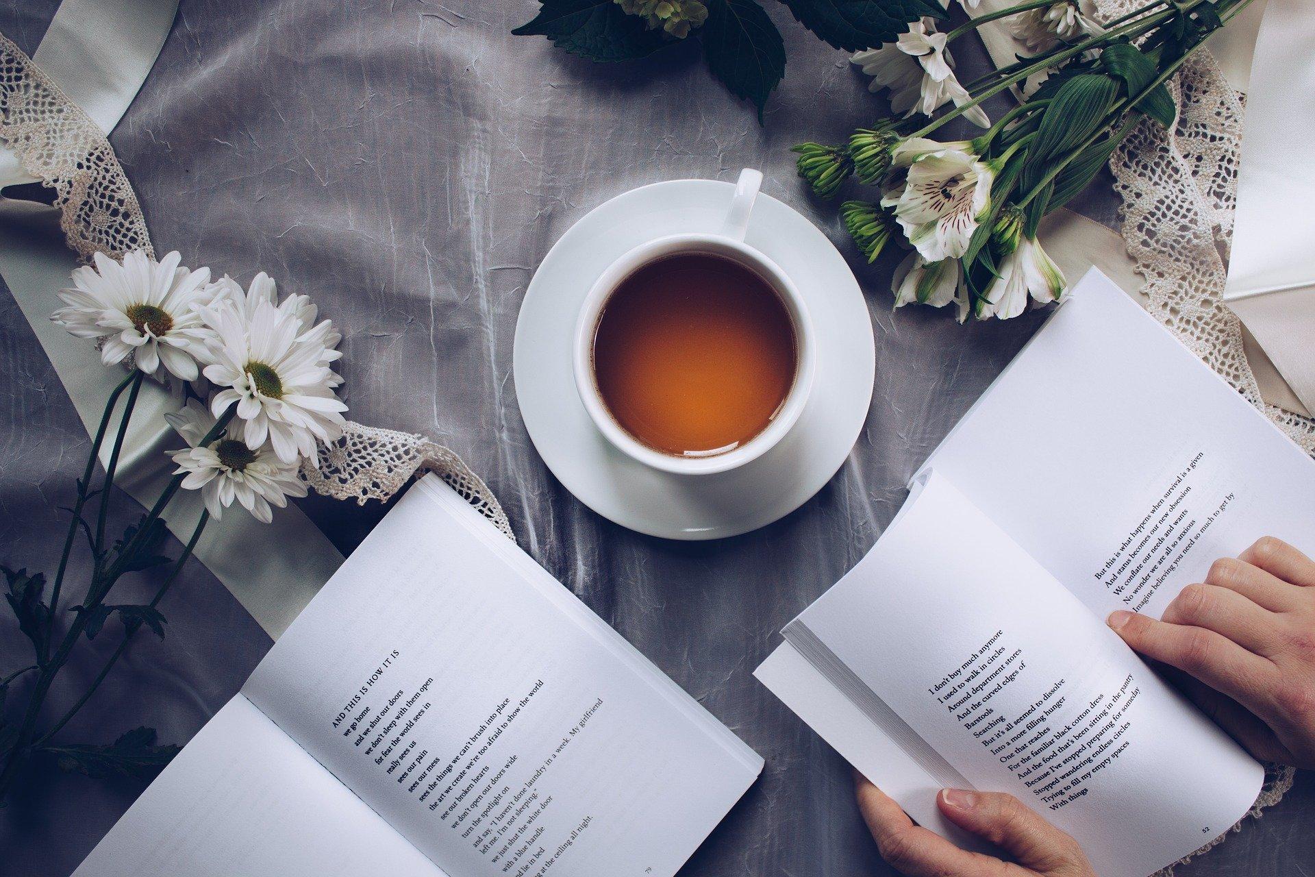 (Hoje se comemora o Dia Mundial do Livro. Foto: Reprodução/Pixabay )
