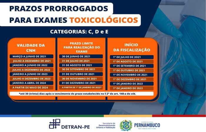 (Foto: Detran/Divulgação )
