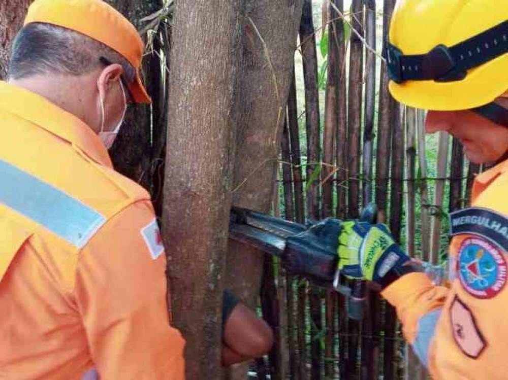 (Garoto foi resgatado por militares após ficar entalado em árvore durante brincadeira em Itajuba, Sul de Minas; Yuri Gabriel tem autismo e sonha em ser bombeiro. Foto: CBMMG/divulgação)