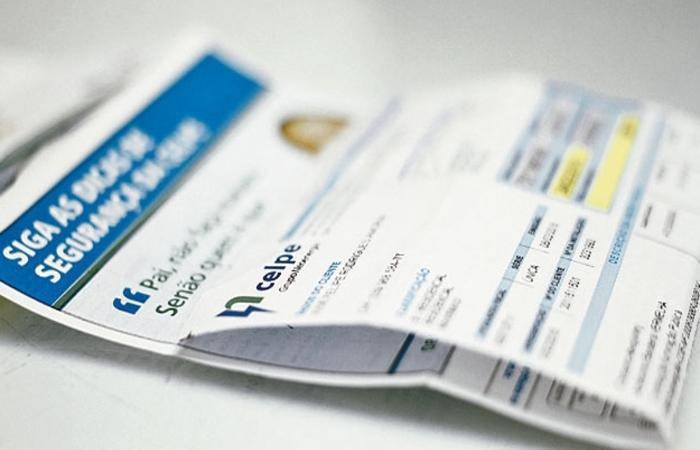 Quem optar por realizar o parcelamento, deverá realizar a transação por meio do site da empresa (Celpe/Divulgação)