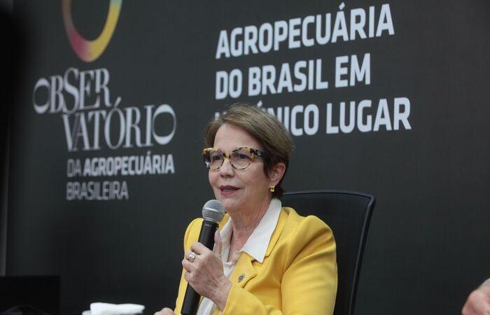 Segundo o Ministério da Agricultura, o portal deve receber cerca de 1 milhão de consultas por semana (Carlos Silva/Mapa)