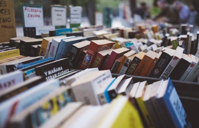 A plataforma virtual vai promover envio de livros para todo o Brasil (Foto: Pixabay/Reprodução)