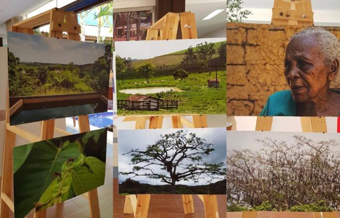 As fotos foram feitas em uma das nove unidades de conservação do município (Foto: Divulgação)