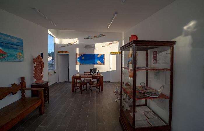 Vitrine fica no Centro de Atendimento ao Turista de Ipojuca (Foto: @FilipeCadena/Prefeitura de Ipojuca/Setur)