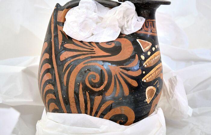 Acervo particular foi doado na semana em que o museu comemora 203 anos  (Foto: Museu Nacional do Rio de Janeiro)