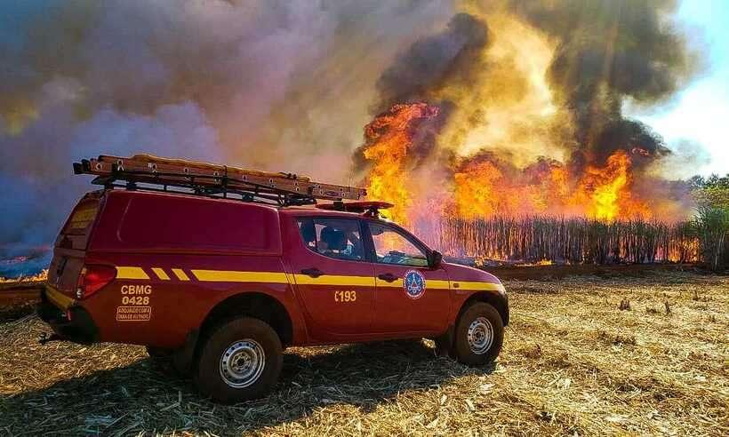 (Número de incêndios em matas são os que mais preocupam os bombeiros. Foto: CBMMG/Divulgação)