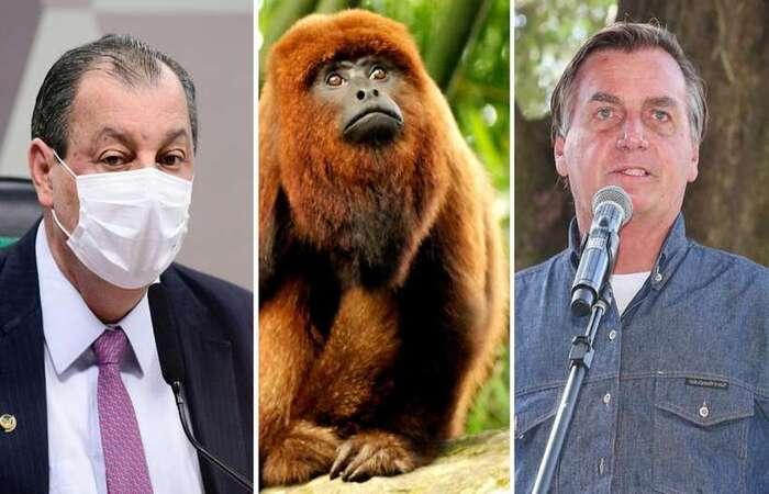 (foto: Pedro França/Agência Senado Isac Nóbrega/PR)
