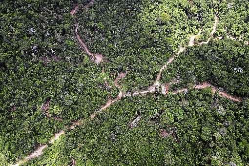 (Decreto editado no final de junho autorizava a ação das Forças Armadas somente em áreas de propriedade ou posse da União, como terras indígenas e áreas federais de preservação. Foto: Raphael Alves/AFP)