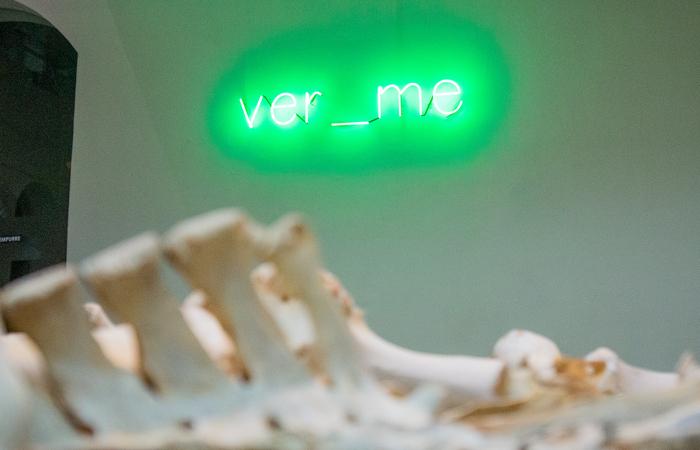 Concebidas anteriormente, as peças recebem novo significado devido à morbidez atual da pandemia (Foto: Andrey Lucas/Divulgação)