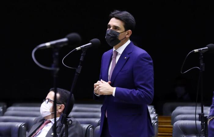 (Najara Araujo/Câmara dos Deputados)