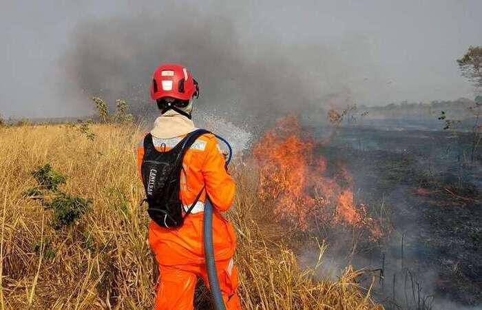 Combate ao incêndio na Fazenda Pé do Morro, zona rural de Guaraciama, Norte de Minas (Foto: Corpo de Bombeiros/Divulgação)