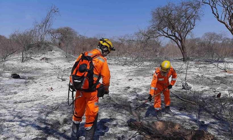 Bombeiros fazem rescaldo em área atingida pelo fogo no município de Gameleira  (Foto: Corpo de Bombeiros/Divulgação)