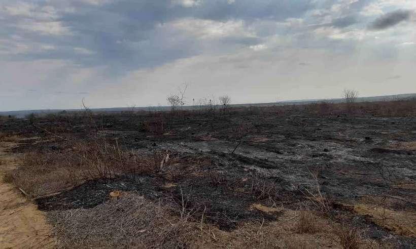 Área destruída por um incêndio em Ninheira  (Foto: Corpo de Bombeiros/Divulgação)