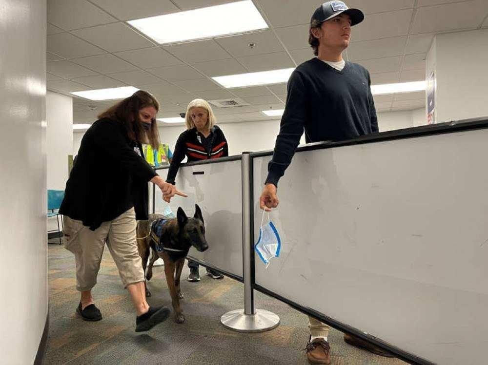 Além da detecção de drogas e armas, funcionários agora passam também pela detecção de coronavírus (Foto: Miami International Airport)