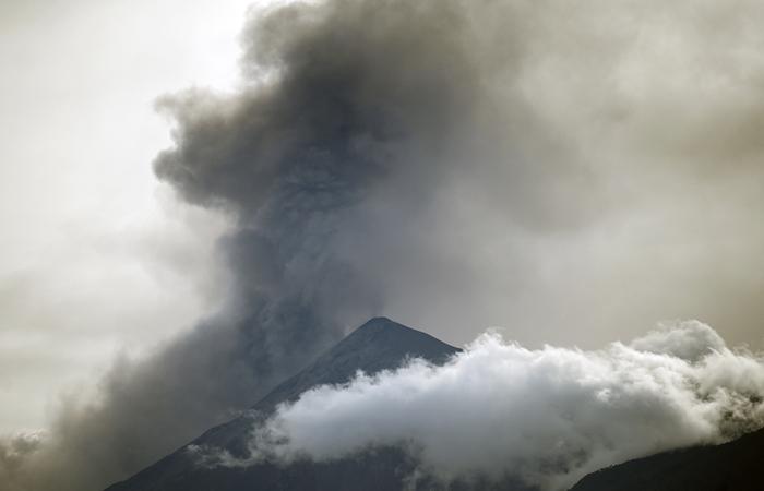 (Foto: Johan ORDONEZ / AFP )