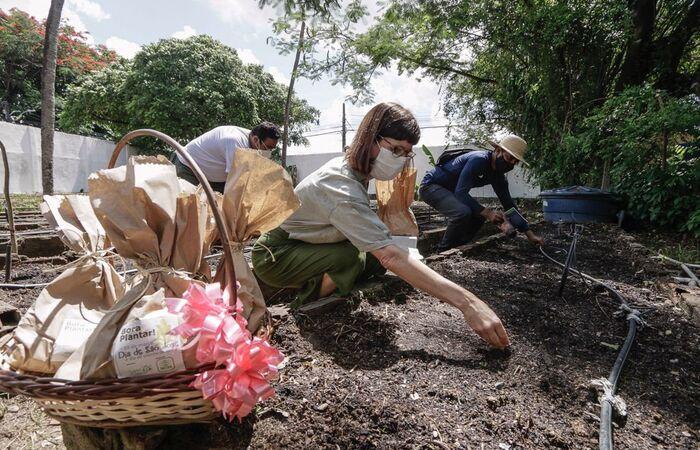 (Com o objetivo de garantir segurança alimentar para a população, documento vai nortear a política de fomento a estruturas de produção como hortas comunitárias. Foto: Prefeitura do Recife/Divulgação)