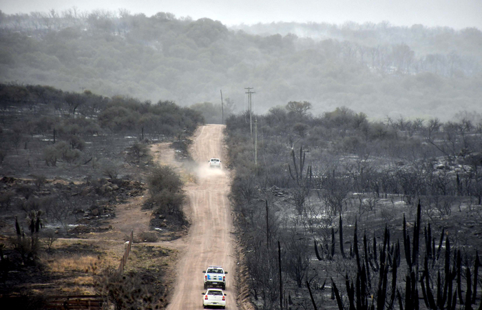 (Foto: Laura LESCANO / TELAM / AFP )