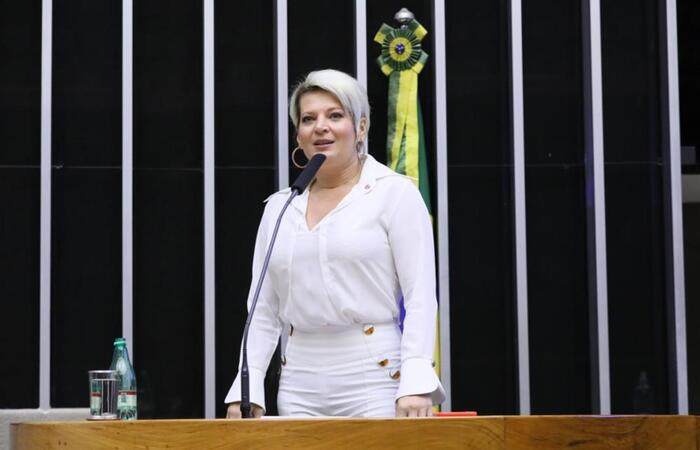 (Cleia Viana/Câmara dos Deputados)