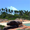 Praias de Pernambuco - Litoral Sul (Annaclarice Almeida/DP/DA Press)
